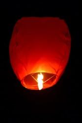 - Dilek Feneri