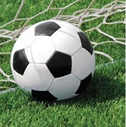 - Futbol Partisi Peçete