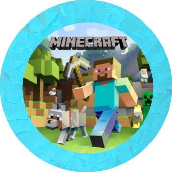 Minecraft Pinyata ve Sopası