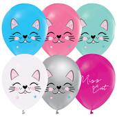 - Miss Cat Lateks Balon